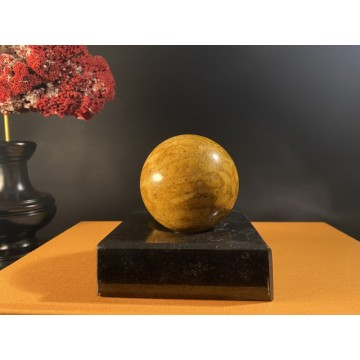 Small Fossil Coral Sphere